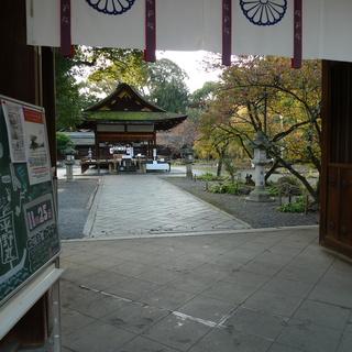 平野神社(3).JPG